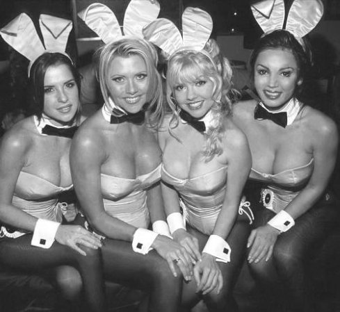 Heta kaniner värmer